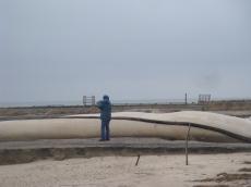 Galveston 09 014